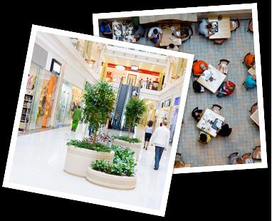 polas-public-spaces_30253